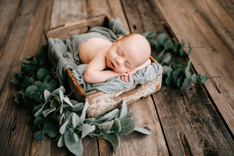 Newborn Photography, baby asleep in a wooden crate surrounded by greenery